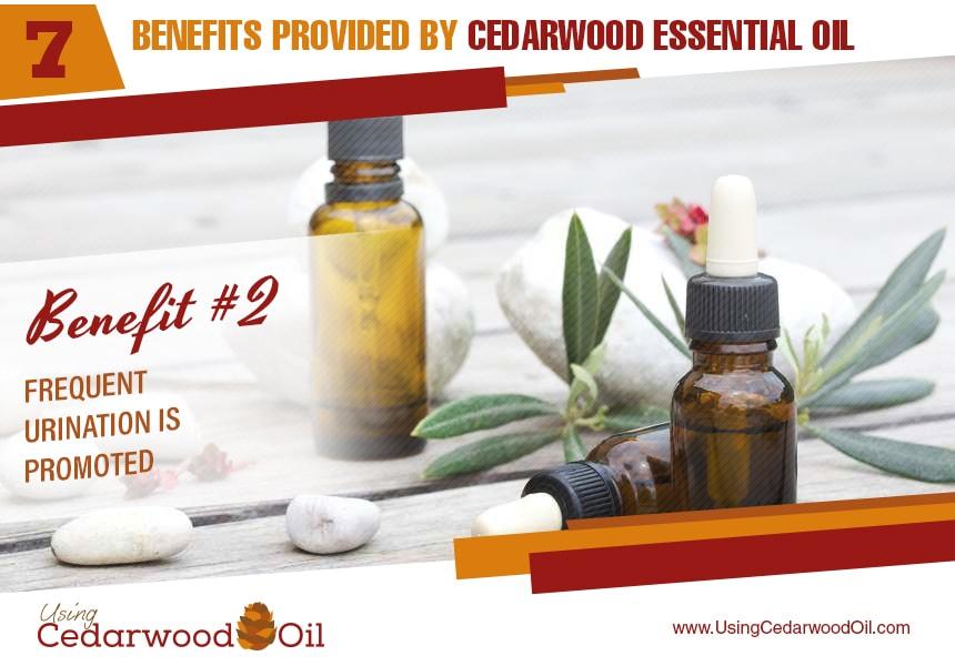 cedarwood essential oil uses