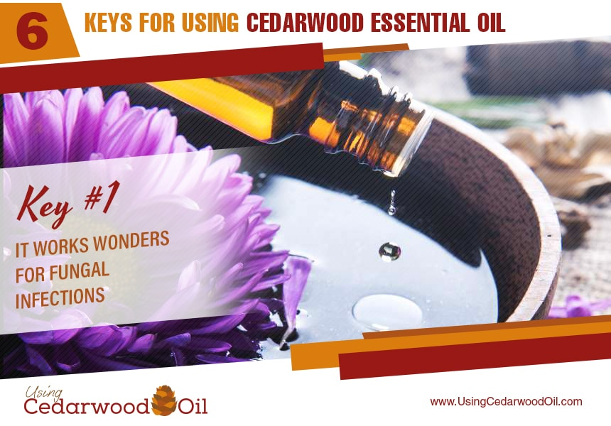 how to use cedarwood essential oil